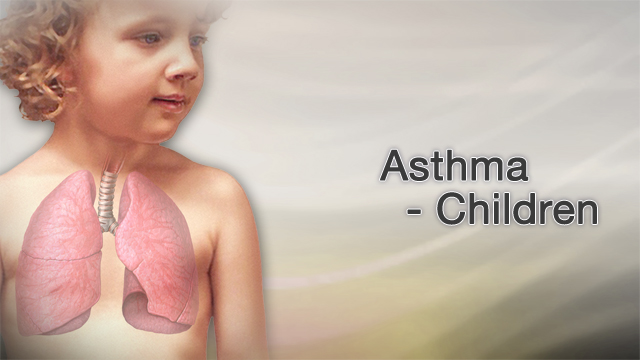 <div class=media-desc><strong>Asthma - children</strong><p>Did you know that asthma is one of the most common disorders affecting children, as many as 10 percent of them? Thankfully, advances in the diagnosis and treatment of asthma have dramatically improved life for these children. Asthma is caused by swelling and other signs of inflammation in the airways. When an asthma attack occurs, the muscles surrounding the airways become tight and the lining of the air passages swells. This reduces the amount of air that can pass by the bronchioles, or small tubes, of the lung. Most asthma attacks are caused by triggers, such as pollen, dust mites, mold, pet dander, cockroaches, tobacco smoke, and exercise. Your child may have asthma if they experience shortness of breath, maybe gasp for air, and have trouble breathing out. When breathing gets very difficult, the skin of your child's chest and neck may suck inward. Your child may cough so hard at night he wakes from sleeping. He may have dark bags under his eyes and feel tired and irritable. Your child's doctor will listen to your child's lungs. The doctor will have your child breathe into a device called a peak flow meter. This device can tell you and your child's doctor how well the child can blow air out of his lungs. If asthma is narrowing and blocking your child's airways, his peak flow values will be low. To treat your child with asthma, you will need to work with your child's pediatrician, pulmonologist, or allergist as a team. Your child will need an action plan that outlines his asthma triggers and how to avoid them, how to monitor his symptoms, measuring peak flow, and taking medicines. You should have an emergency plan that outlines what to do when your child's asthma flares up, at home and in school. Make sure the school has a copy of your child's asthma action plan too. Your child will probably need to take two kinds of medicines, long-term control medicines and quick relief or rescue medicines. Your child will take long-term control medicines every day to prevent asthma symptoms, even when he has none. Your child will need to use quick relief medicines during an asthma attack. If your child needs to use an inhaler with his medicines, make sure the doctor shows him how to use a spacer device, to get the medicine into his lungs properly. Today, most children with properly managed asthma can lead a life unhindered by their disease. It shouldn't hold them back from even the highest levels of athletic competition. With proper education and medical management, it is possible to control this disease on a daily basis and prevent asthma attacks.</p></div>