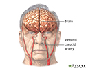 right hand presentation -