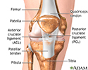 Anterior cruciate ligament repair - series