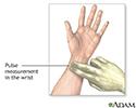 Wrist pulse