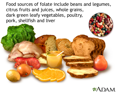 Vitamin B9 source