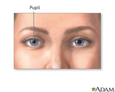 Normal pupil