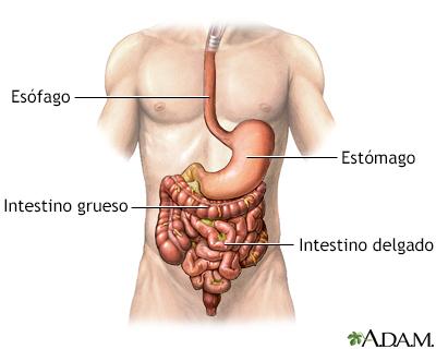 Sangrado del tracto gastrointestinal - Serie | University of ...