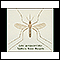 Image for Mosquito, adult