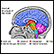 Image for Brain structures